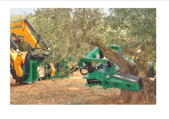 vibradores agricolas badajoz (4)